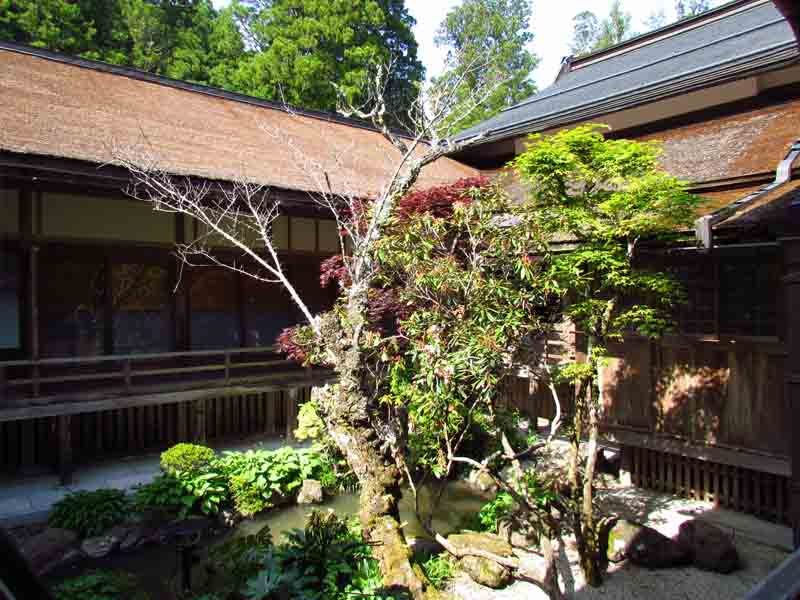 Courtyard view of the monastery accommodation in Koyasan