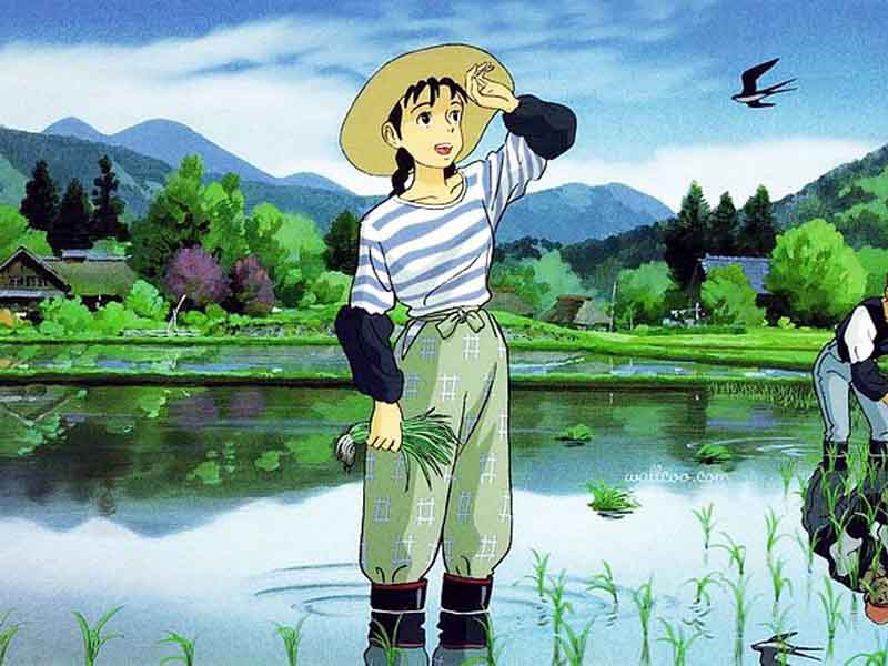 Studio ghibli film, 'Only yesterday'