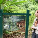 Woman standing next to sign in Cat Tien National Park