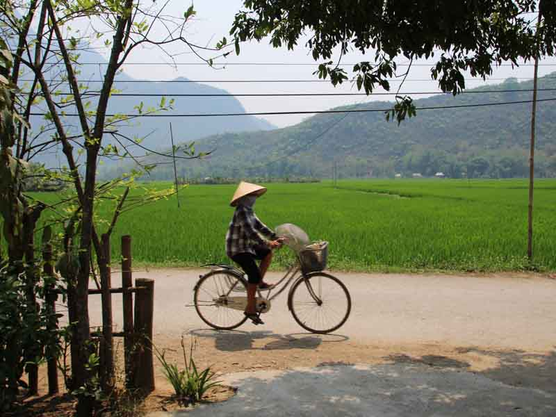 local person cycling in mai chau