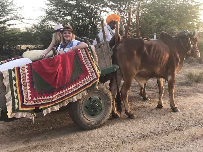 people riding ox and cart