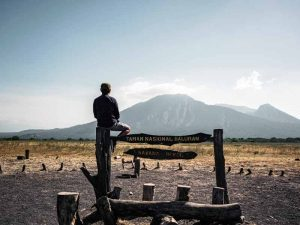 man sitting by sign at baluran national park