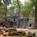 Cambodia Angkor Watt Jungle Temple