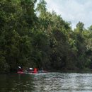 Cardamom Mountains Kayak