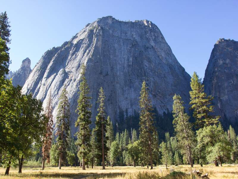 Yosemite trees and mountain in usa