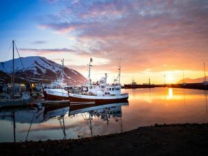 Boats in a harbour with the sunset