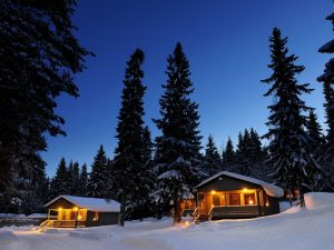 lodges nestled between the trees