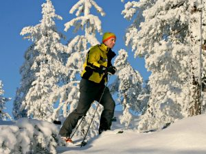 skier going past the trees