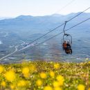 two people sit on a ski lift above a flowery field