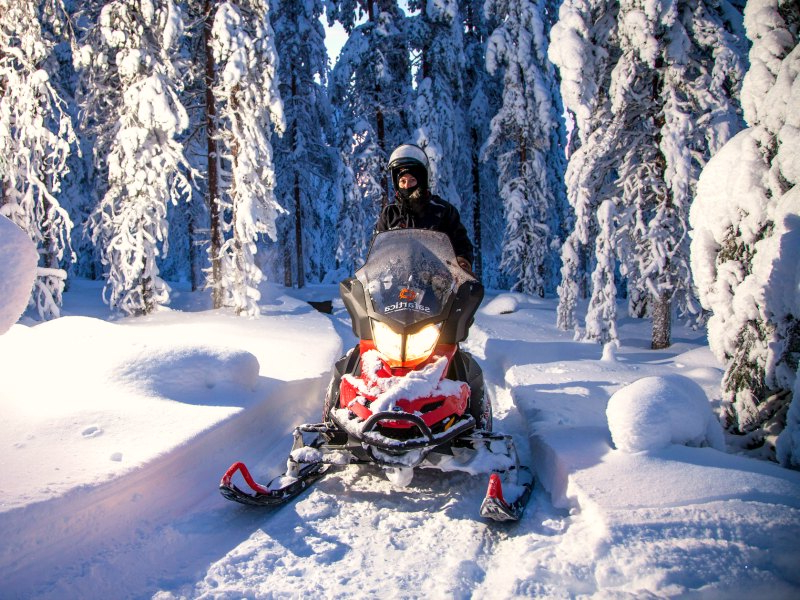 a snowmobile ploughs through the woods
