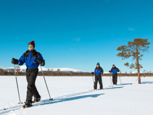 three happy people decide to ski through the snowy wilderness