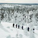 people skiing through the snow and trees