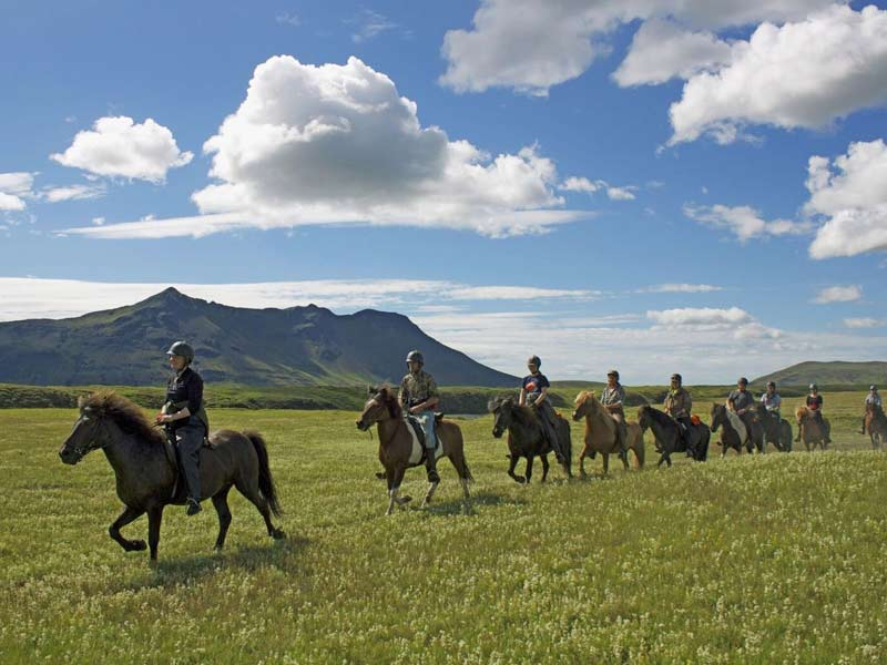 a group of people riding horses through a field